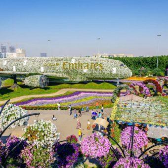 Jardim Milagre no Dubai