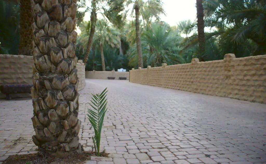 Oásis de Al Ain